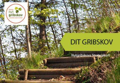 Hvad vil nytgribskov med Gribskov Kommune?